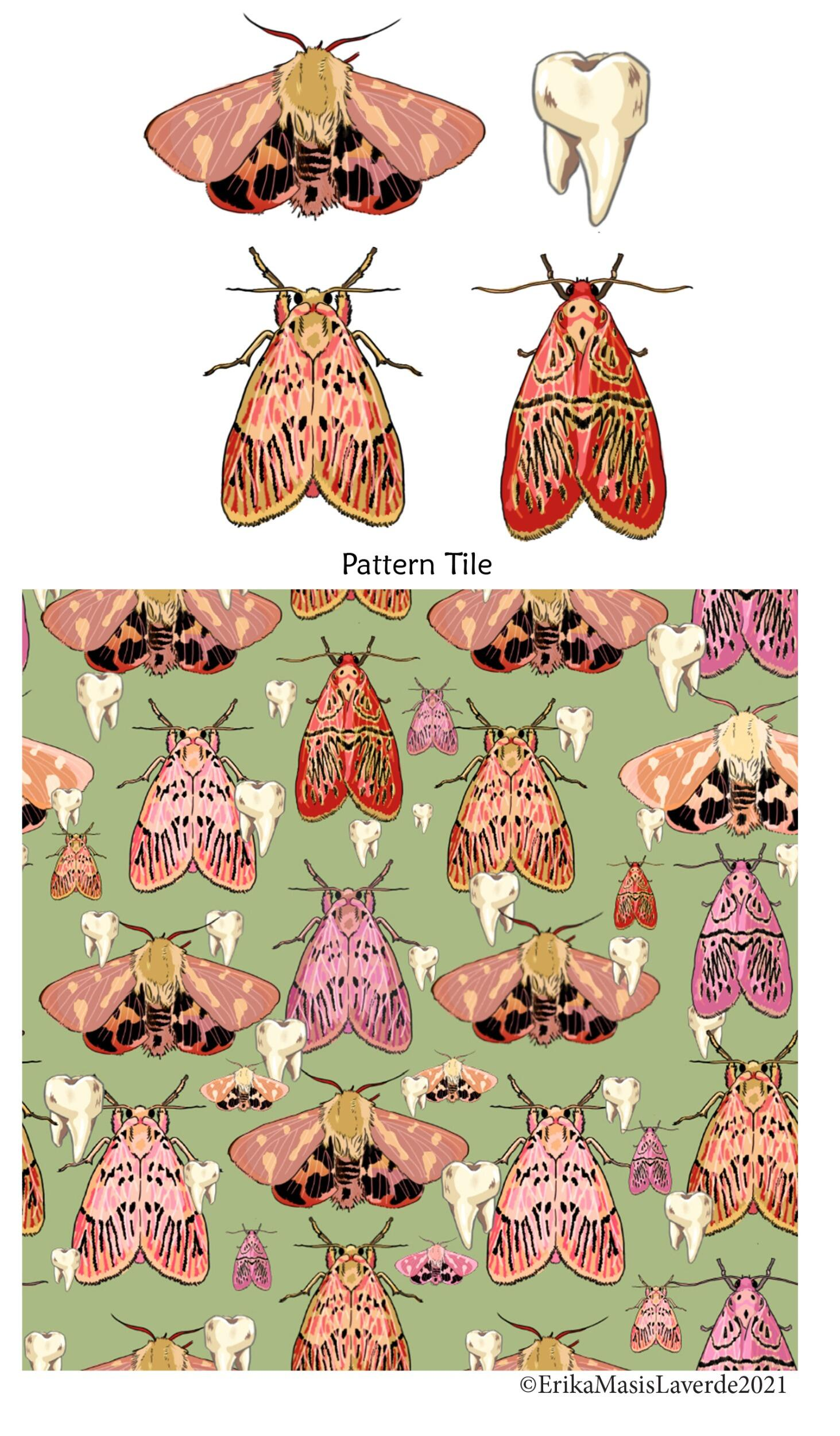 Pattern studies of butterflies by Erika Masis Laverde done in digital media as a part of a larger project for digital drawing.