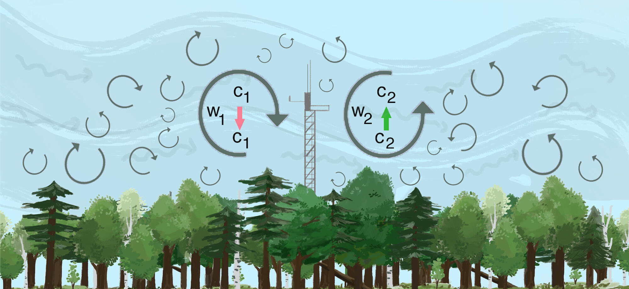 Illustration demonstrating the phenomenon known as eddy covariance, projecting carbon emissions as they interact with wind patterns and a forested habitat.